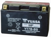 Rotax Batterij Yuasa